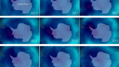The seasonal Antarctic ozone hole—the area where the ozone concentration drops below 220 Dobson units—reached its peak area on September 8, 2019.  In these NOAA satellite images from August 31–September 8 (upper left to bottom right), places with high ozone levels are bright blue, while the ozone hole is dark blue and deep red. (NOAA Climate.gov image, based on daily TOAST data processed by NOAA's Environmental Visualization Lab.)